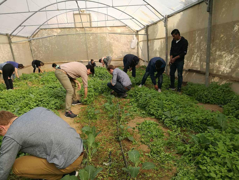 work day in Um al-Khair