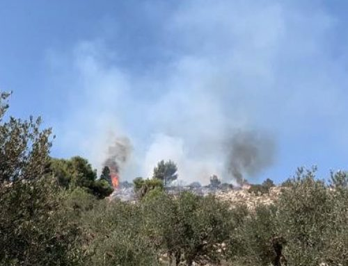 Radical Israeli settlers injury 4, fields set on fire in Huwara | 10.7.2020